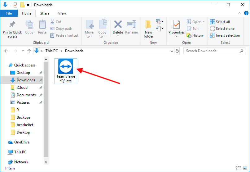 The program Teamiewer QS in a Windows download folder